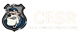 CESR - Czech Economic Subjects Rating